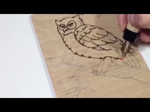 Halak rajzolva