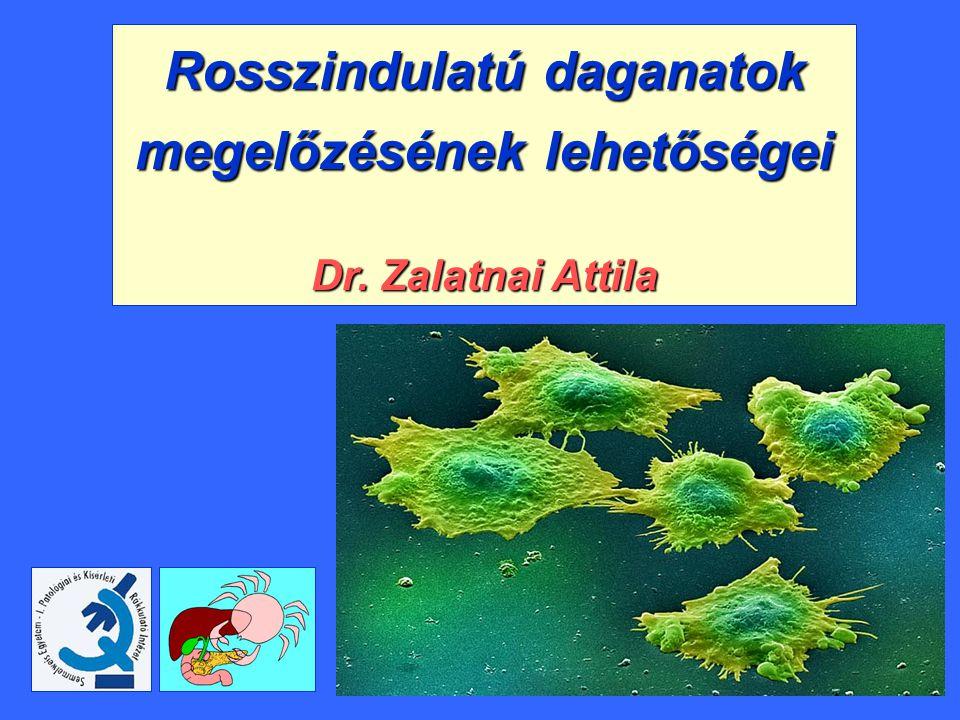 HPV - Dr. Máté Szabolcs