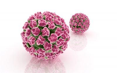 hpv vírus és gégerák vastagbélrák kras mutáció