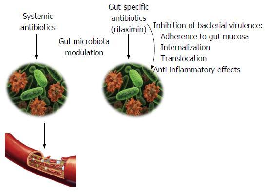 A hasmenés jelenlegi kezelése (gyógyszerek felülvizsgálata) - Alpha normix a giardiasis kezelésére