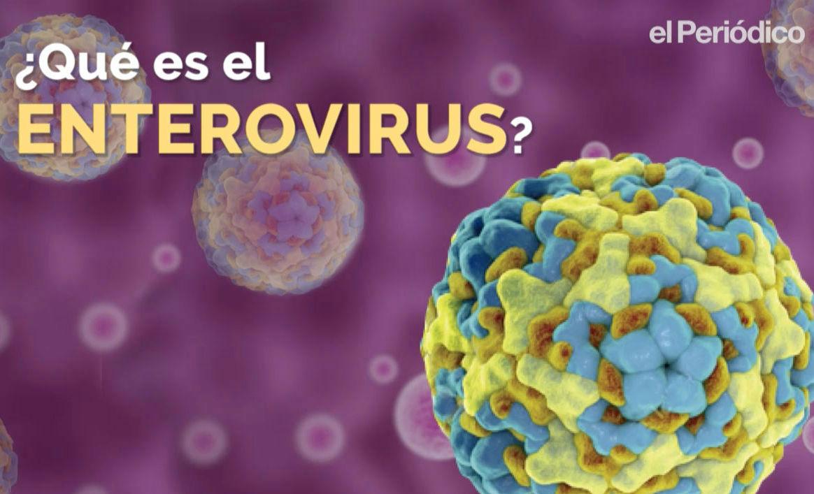 Mi is az enterovírus?
