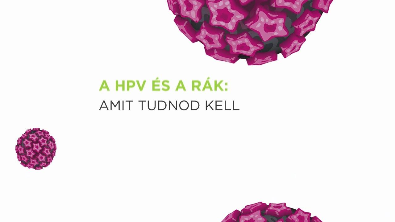 humán papillomavírus hpv-vel összefüggő rák a condyloma átvitelének módszerei