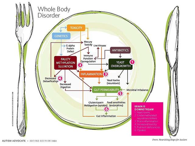 Evészavarok: anorexia nervosa, bulimia | REIKON