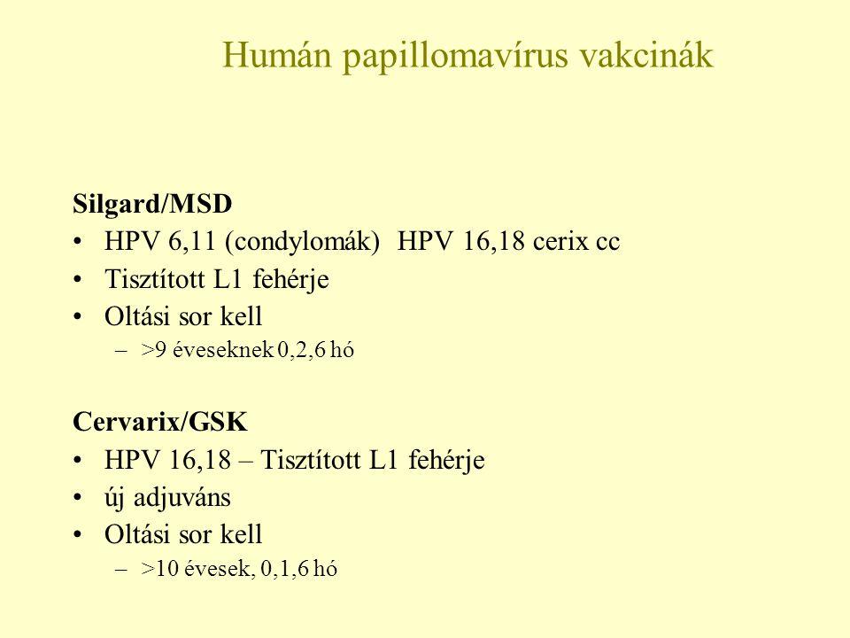 A papillomavírus elleni hatékony vírusellenes szerek: kezelés és terápia