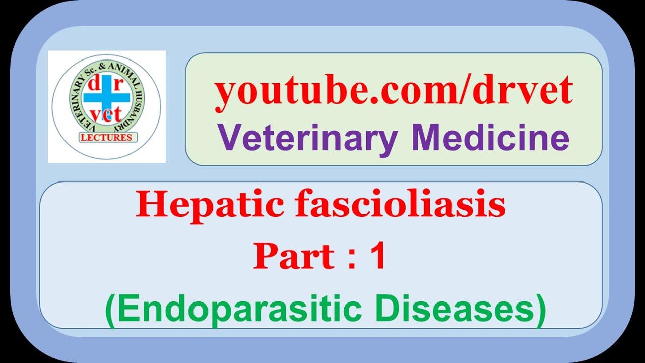 Emésztőrendszeri helminták kezelése, Gyógyszerek helminták kezelésére, Emésztőrendszeri helminták