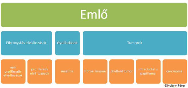 intraductalis papilloma kezelés