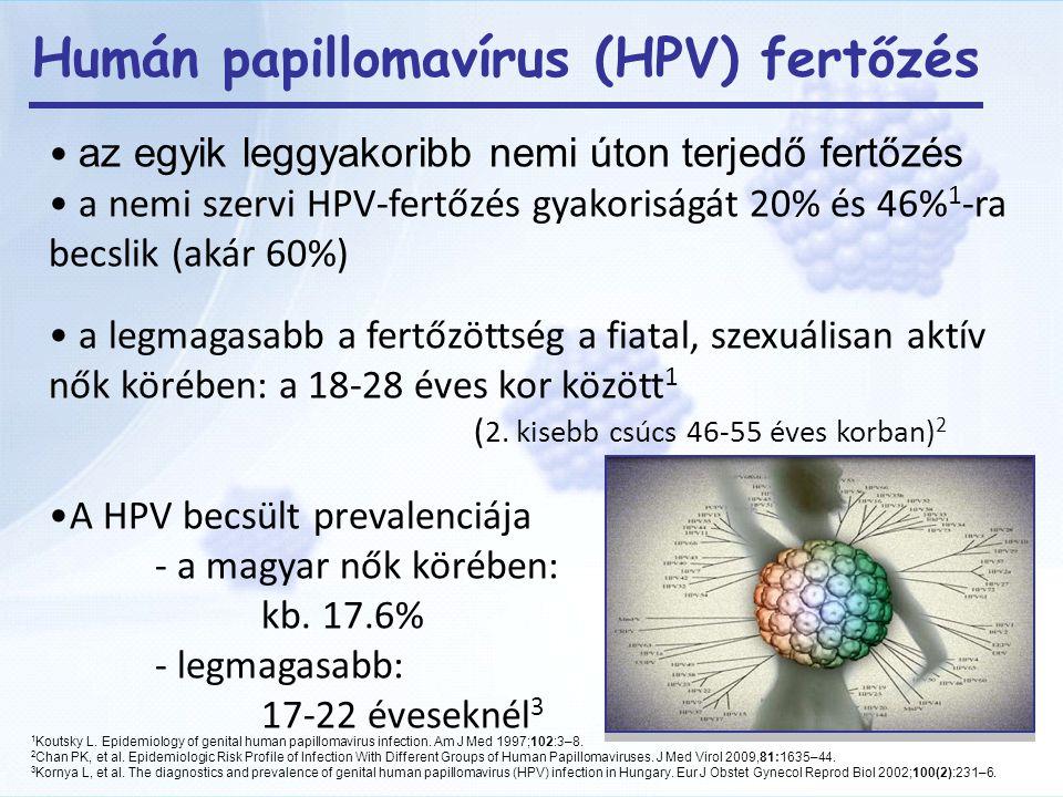 emberi papillomavírus vírus életciklusa
