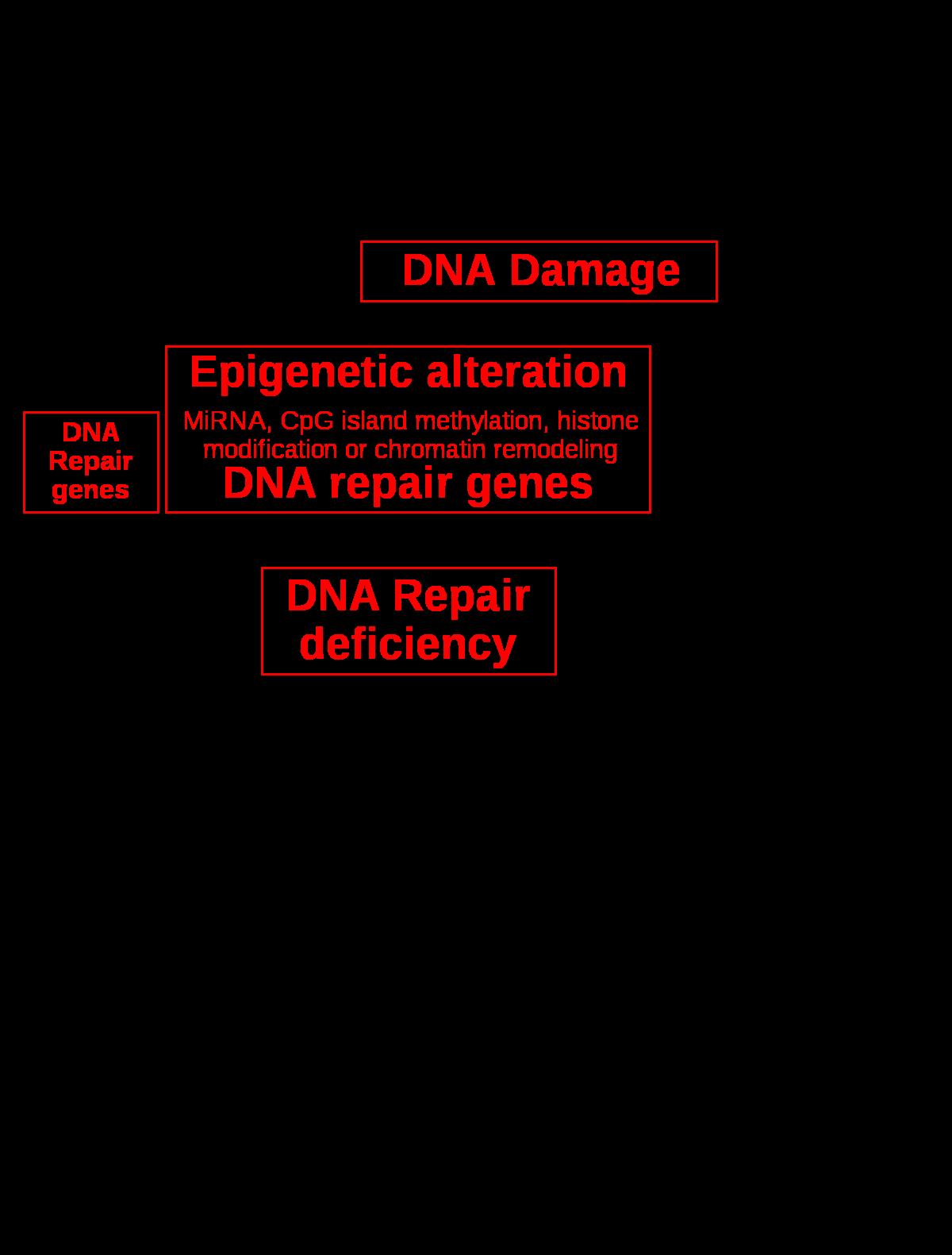 gyomorrák biomarker