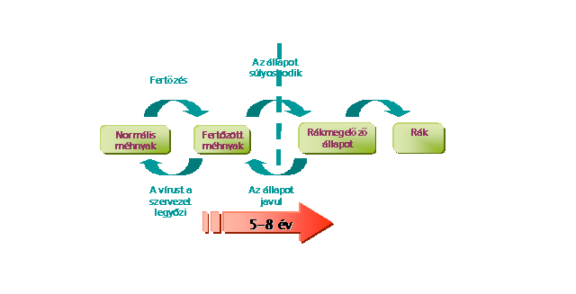 intraductalis papilloma kezelés a condyloma első szakasza