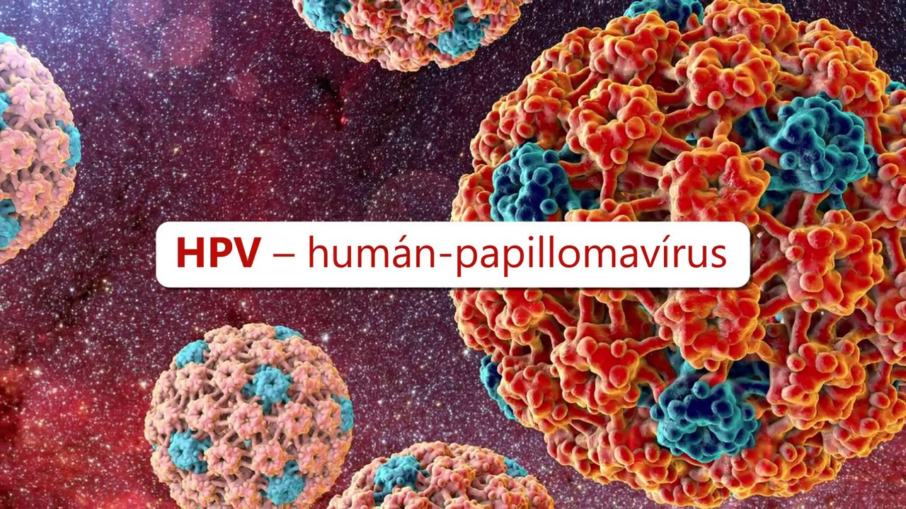 humán papillomavírus vakcinarák