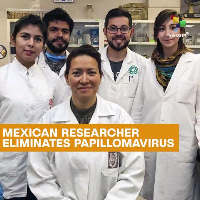 mexikói tudós hpv-gyógyítása a trichocephalus életciklusa