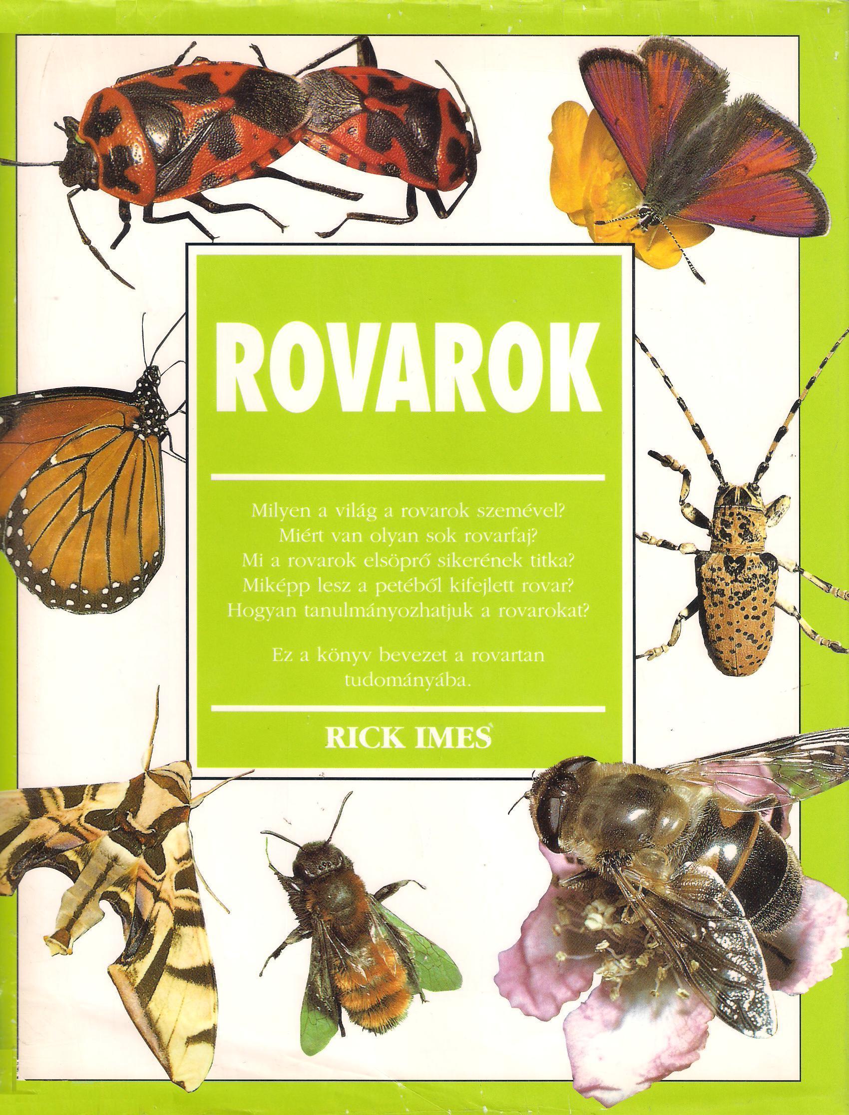 Veszélyes kártevők: Vetésfehérítő bogarak