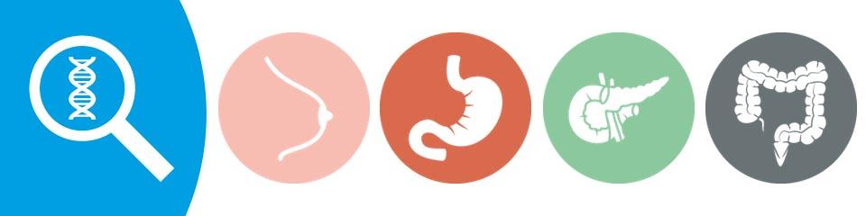 Miért kezelik külön kategóriaként a HER2-pozitív emlődaganatokat?