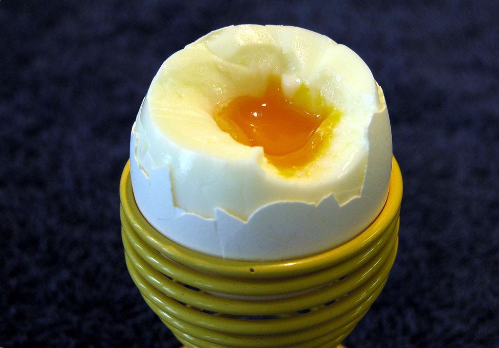a cernagilis tojás nagysága
