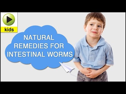 pinworm paraziták gyermekek kezelésében