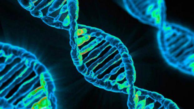 családi rák benyújtása hpv jelentése orvosi