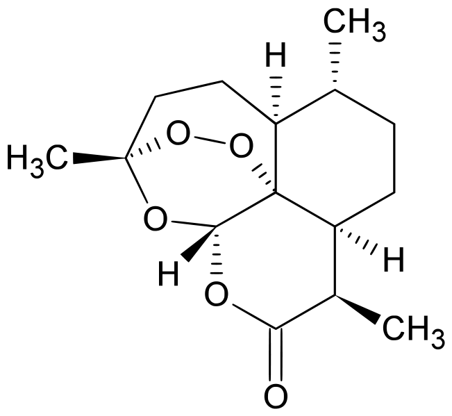 az artemisia annua parazitái a bika bőrének leírása