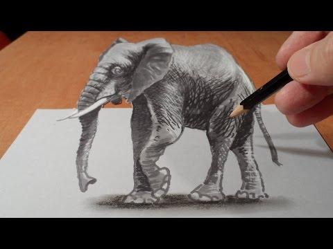 Elefantiázis – Wikipédia