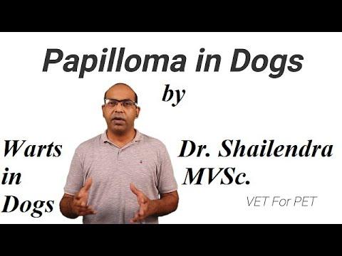 papillomavírus és vírus botulinum toxin a típus