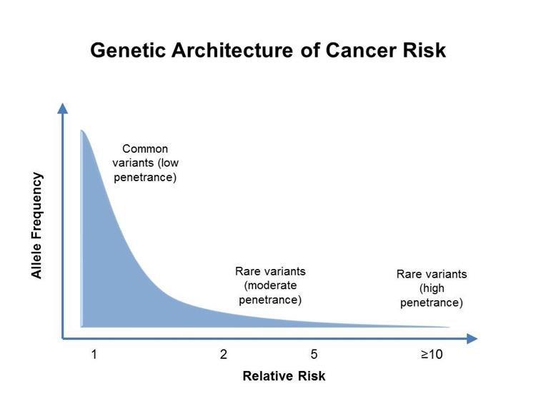 családi rák benyújtása orvosság a nyálkahártyán található genitális szemölcsök ellen