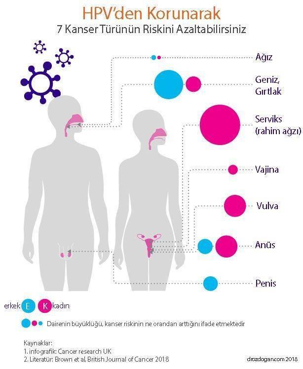 papillomavírus ne demek