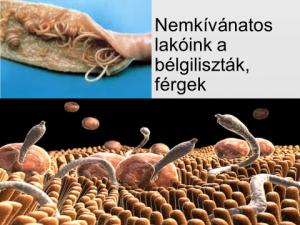csodálatos parazita tisztítószerek)