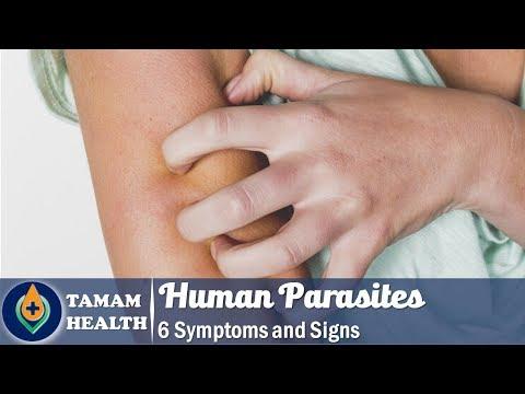parazitaellenes pinwormok)